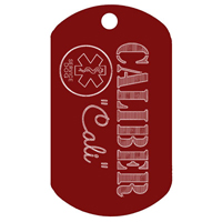 Deluxe pet tag - Buy one Get one FREE!