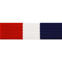 Marine Corps Legion of Valor Ribbon Award