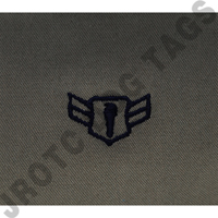 Airman First Class (A1C) ABU Rank JROTC Sew On (Pair)